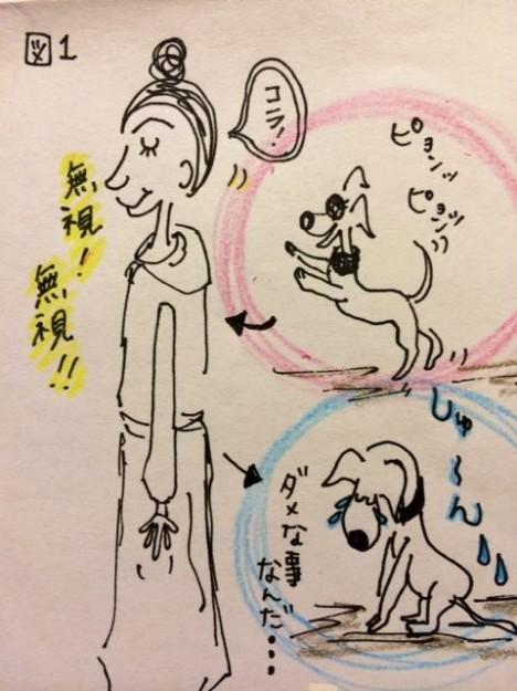しつけ|ジャンプジャンプを躾ける方法【犬の育て方 vol.6】