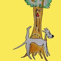 犬の習性を知る|犬の育て方