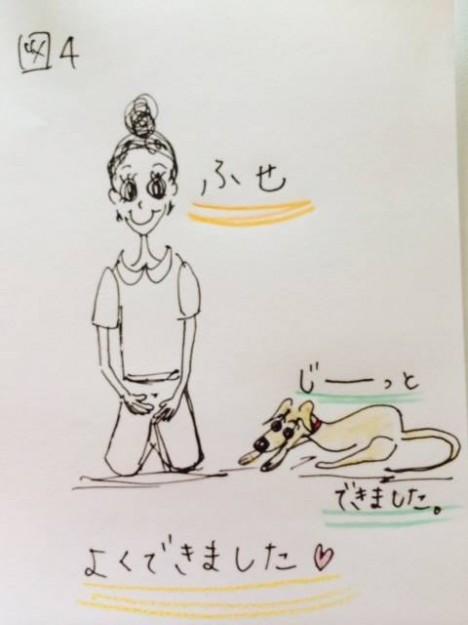 しつけ|スキンシップの1つホールドスチールのトレーニング【犬の育て方 vol.11】