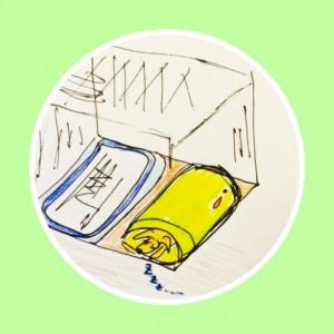 トイレのいろいろなトイレパターン【犬のしつけ・犬の育て方 vol.15】