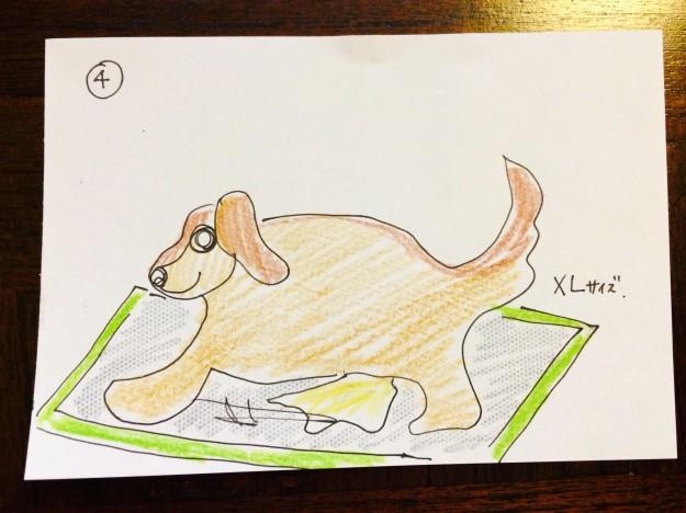 しつけ|トイレ・形やサイズ【犬の育て方 vol.17】