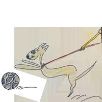 自転車・走っている人・小さい子供・ボール・車など動くものを追いかける事をコントロールする躾【犬の育て方 vol.35】