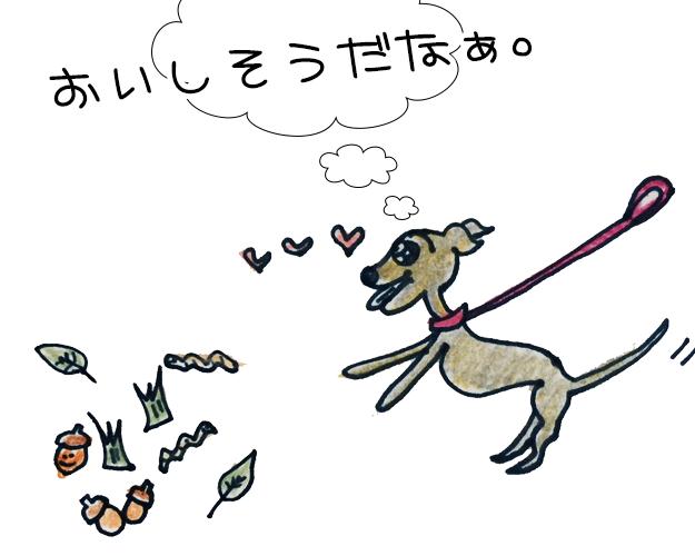 犬はなぜ?外で落ちているものを食べるのか【犬の育て方 vol.36】