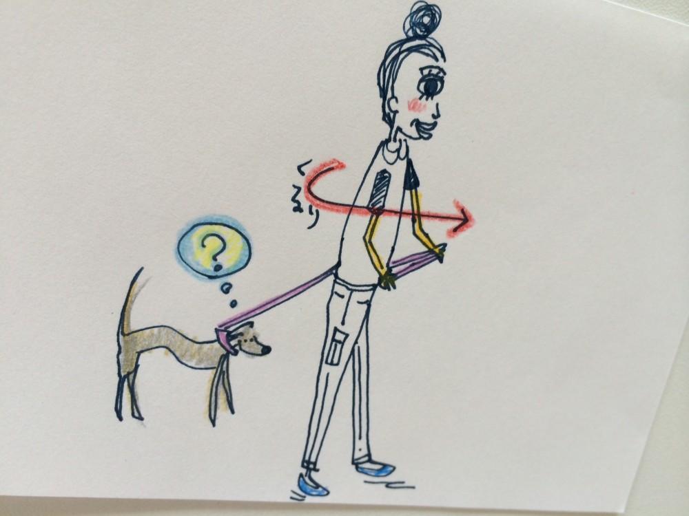リードをグイグイ引っ張る犬を躾ける方法【犬の育て方 vol.37】