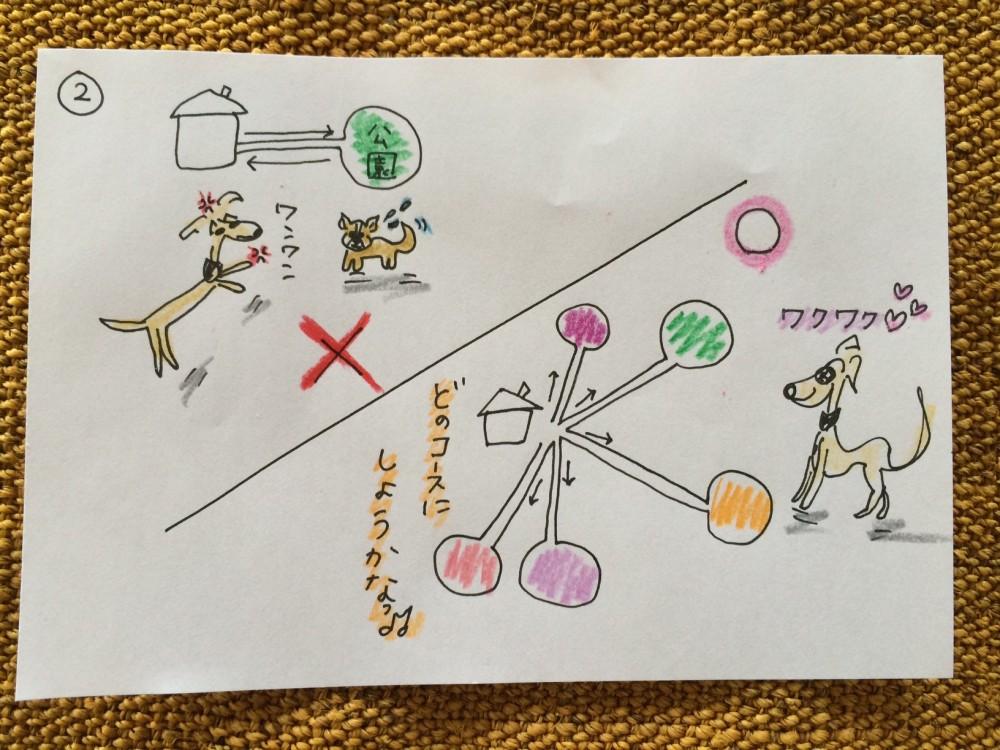 しつけ お散歩・お出かけ【犬の育て方 vol.20】