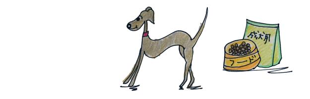 犬の成長その5 1年~7年ぐらいの成年期【犬の育て方 vol.44】