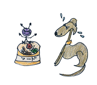 季節ごとの健康管理 夏は日射病や熱射病、食中毒に注意しましょう【犬の育て方 vol.47】