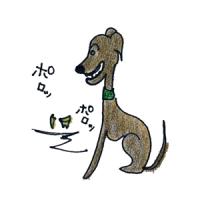 犬の成長その4|約6か月~1年の若齢期【犬の育て方 vol.43】