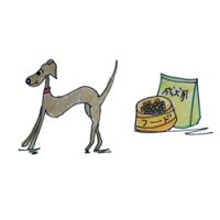 犬の成長その5|1年~7年ぐらいの成年期【犬の育て方 vol.44】