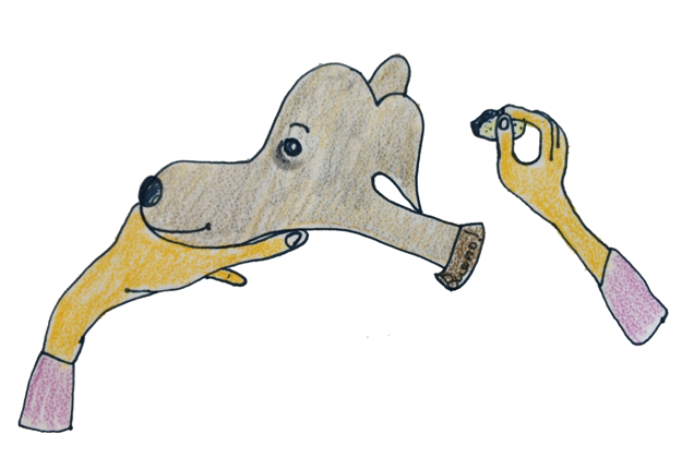 犬のグルーミング|各パーツのお手入れ・目【犬の育て方 vol.57】