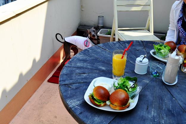 公園を散歩してお腹が空いたので、隠れ家カフェで愛犬と一緒にまったりしてきました。 喫茶店JMZ