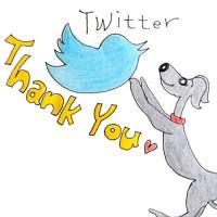 Twitterプレゼント企画「フォロワー200人ありがとう!」