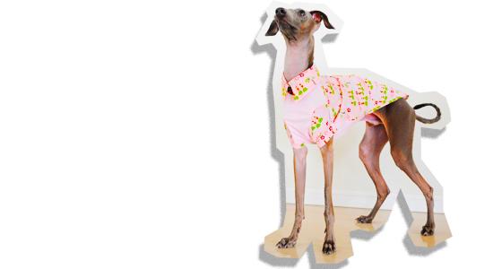 イタグレ犬服|これから夏が来ると言うことで「アロハシャツ」を作ってみた!
