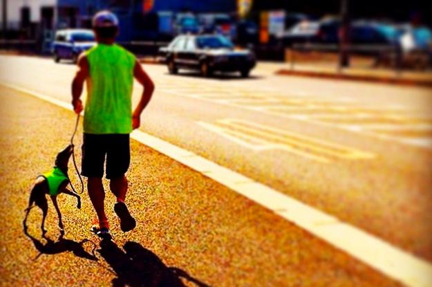 運動の秋と言うことで、9月1日〜9月10日で「100km」走れるかチャレンジしてみた!?そして感じたこと。