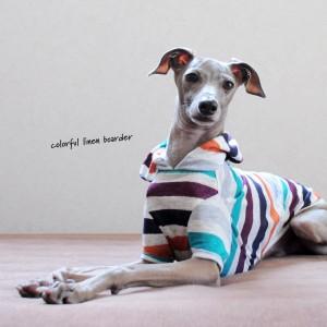 犬服|カラフルなリネンボーダー|選べる4タイプ