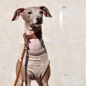 犬服|モダンな起毛ストレッチジャガード|選べる3タイプ×3カラー(ベージュ/カーキ/ブラック)