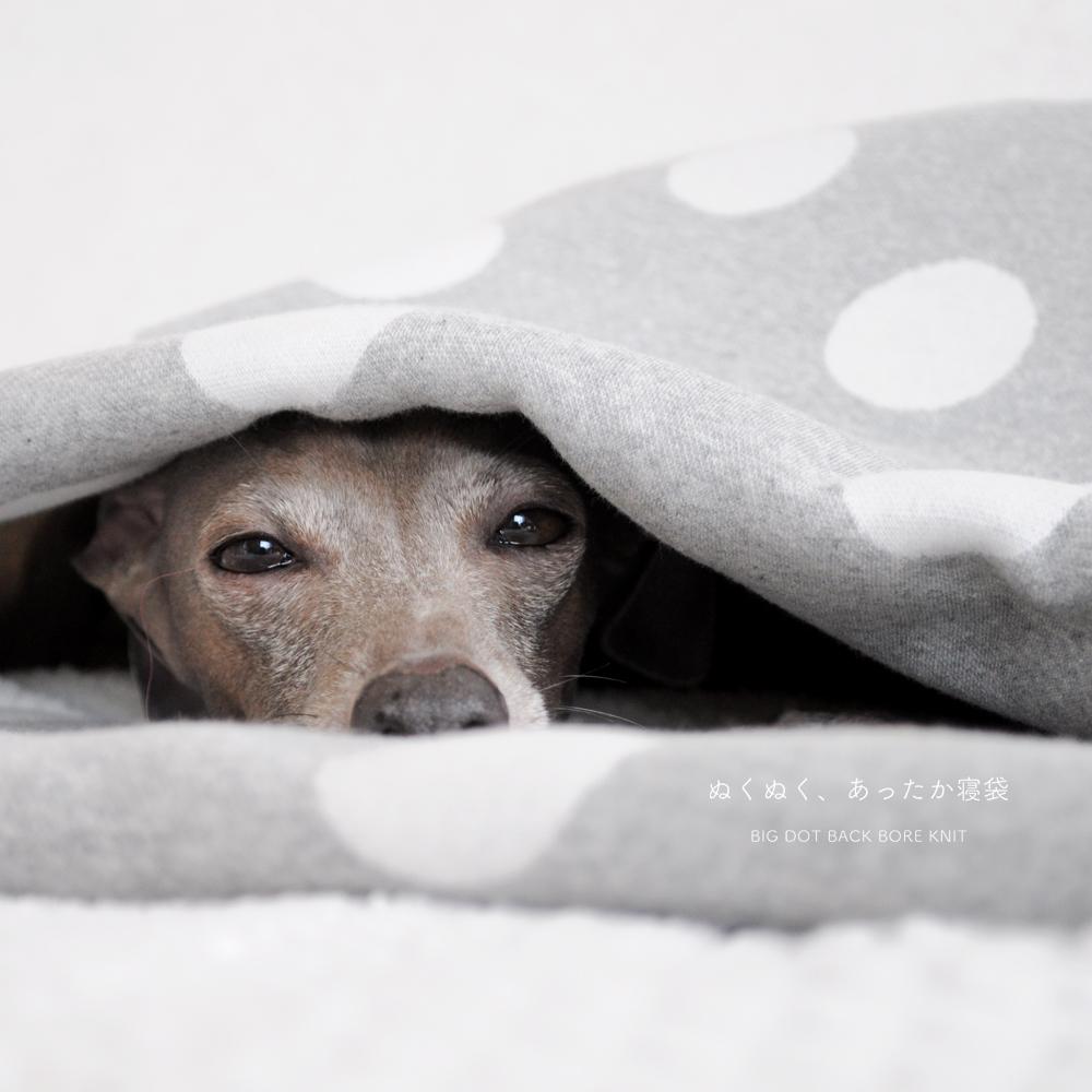 寝袋&カフェマット|ぬくぬく、あったか寝袋「もこもこ素材で毛布のような暖かさ」|大きなドット裏ボアニット生地|選べる3カラー