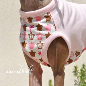 犬服|カメさん|選べる4タイプ