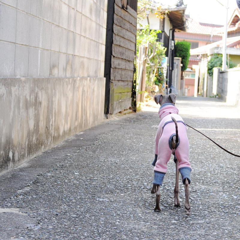 「イタグレ服」秋冬の新作第三弾 トレーナーロンパース 桜色 PapaとMamaと散歩に。