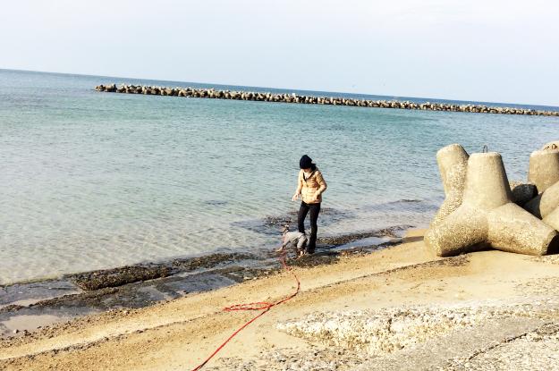 新年明けましておめでとうございます!淡路島で過すお正月