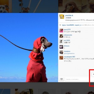 2014年12月に撮った写真の人気ベスト5を調べてみた!by Instagram|インスタをブログに掲載する方法
