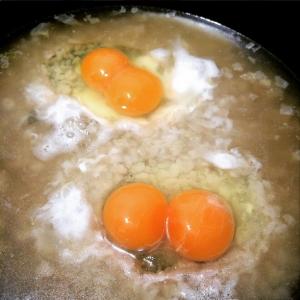 """""""驚きの卵""""今月に入ってもう4個目の双子ちゃん(黄身が2個)!!少し怖いので原因を調べてみた!!"""