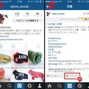 2015年2月に撮った写真の「人気ベスト5」を調べてみた!by Instagram「コメント返信方法」