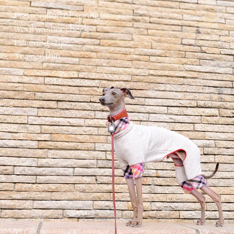 犬服|春の予感♪ウールワッシャーチェック重ね着風トレーナー薄手|選べる3タイプ×3カラー