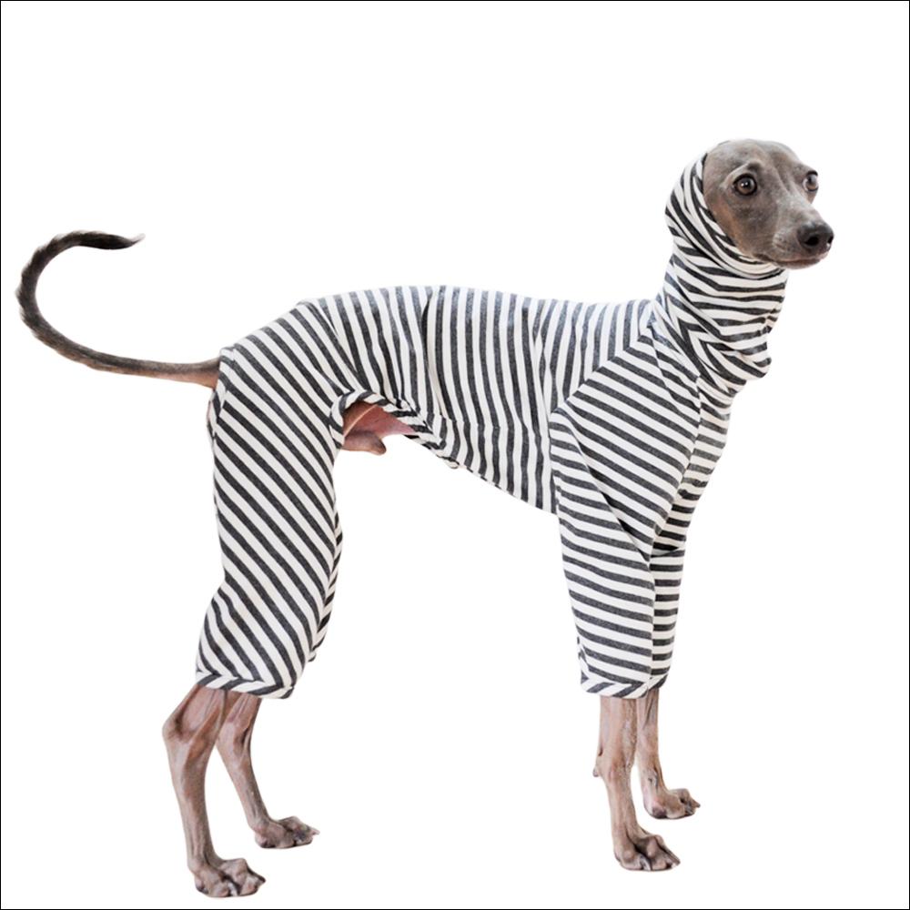 犬服|杢天竺ボーダーニット|選べる3タイプ×3カラー(ベージュ/ネイビー/グレイ)