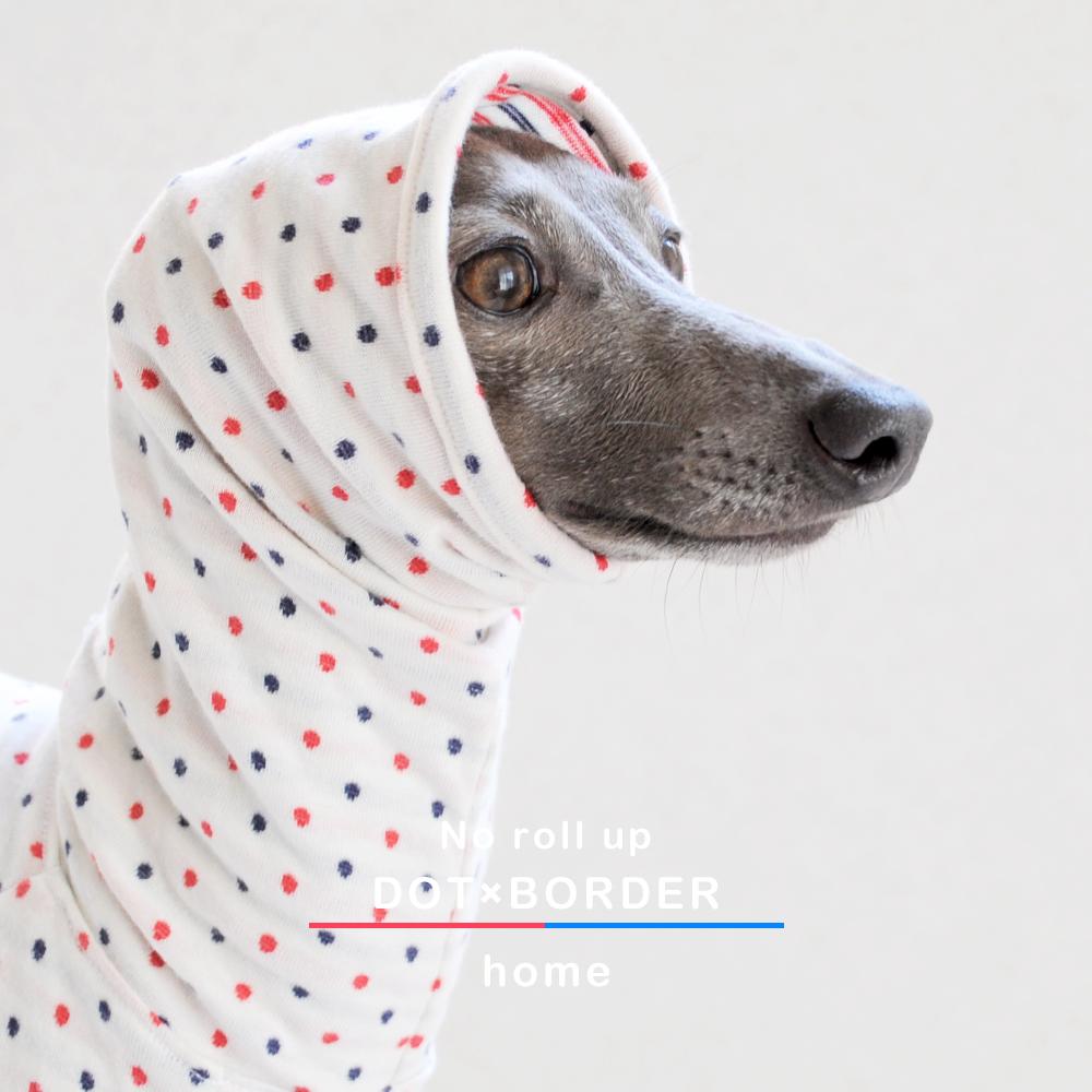 「ロールアップしよう♪」をテーマに新作の犬服を作りました スチュエーションに合わせてお洒落を楽しもう♪