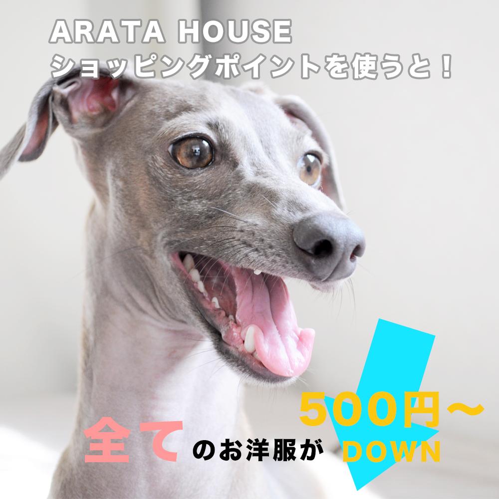 全てのお洋服が「500円DOWN」で買える ユーザー評価(レビュー)でARATA HOUSEショッピングポイントを貯めよう!