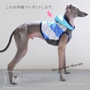 「プレゼント企画」ARATA HOUSEがAmazonに出店しました!それを記念して撮影時にモデルの「イタグレBuono!が5分間着用したお洋服」をプレゼント