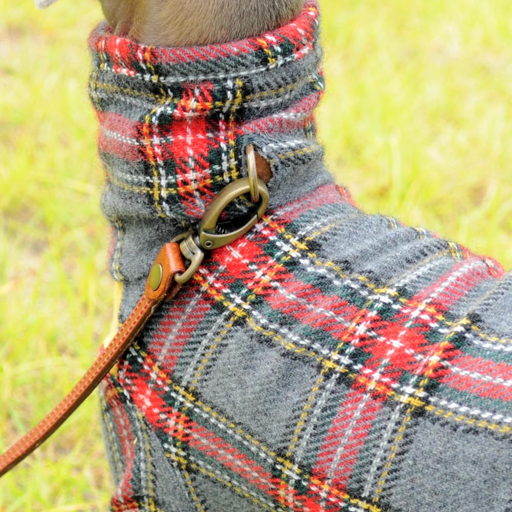 秋の新作「イタグレ服」秋のそよ風を感じながら「タータンチェック」の「およぷく」で公園を散歩する