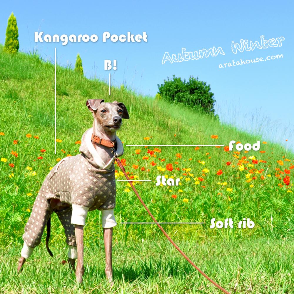 可愛いカンガルーポケット付きの「新作犬服」が出来たけど・・販売は延期。。それでもBuono!は嬉しそう♪