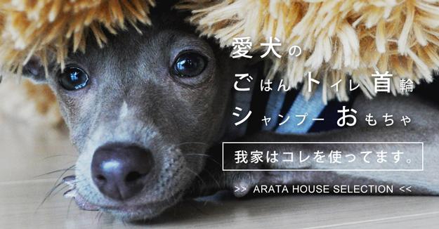 ARATA HOUSE SELECTION