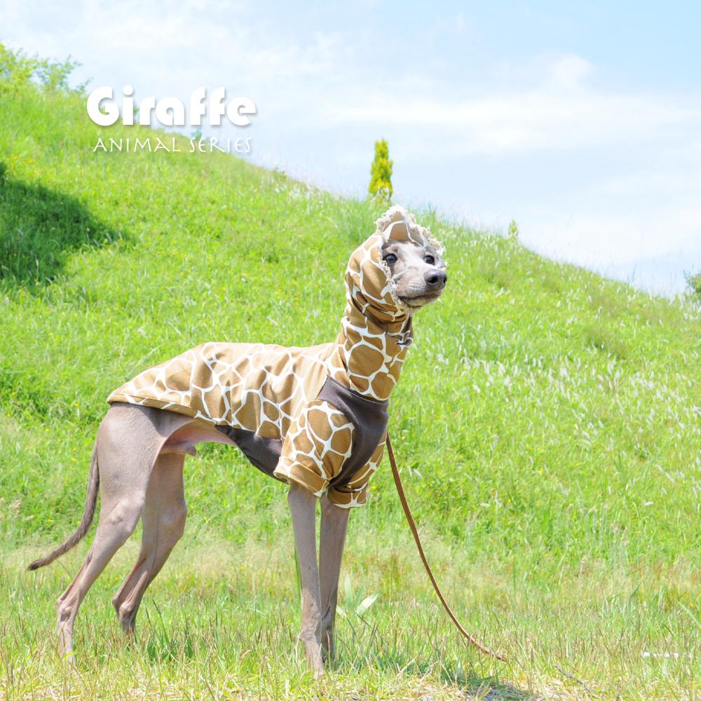「犬服のこと」ネックの長さが0cm〜30cmまで7パターン+フードから選べるようになりました