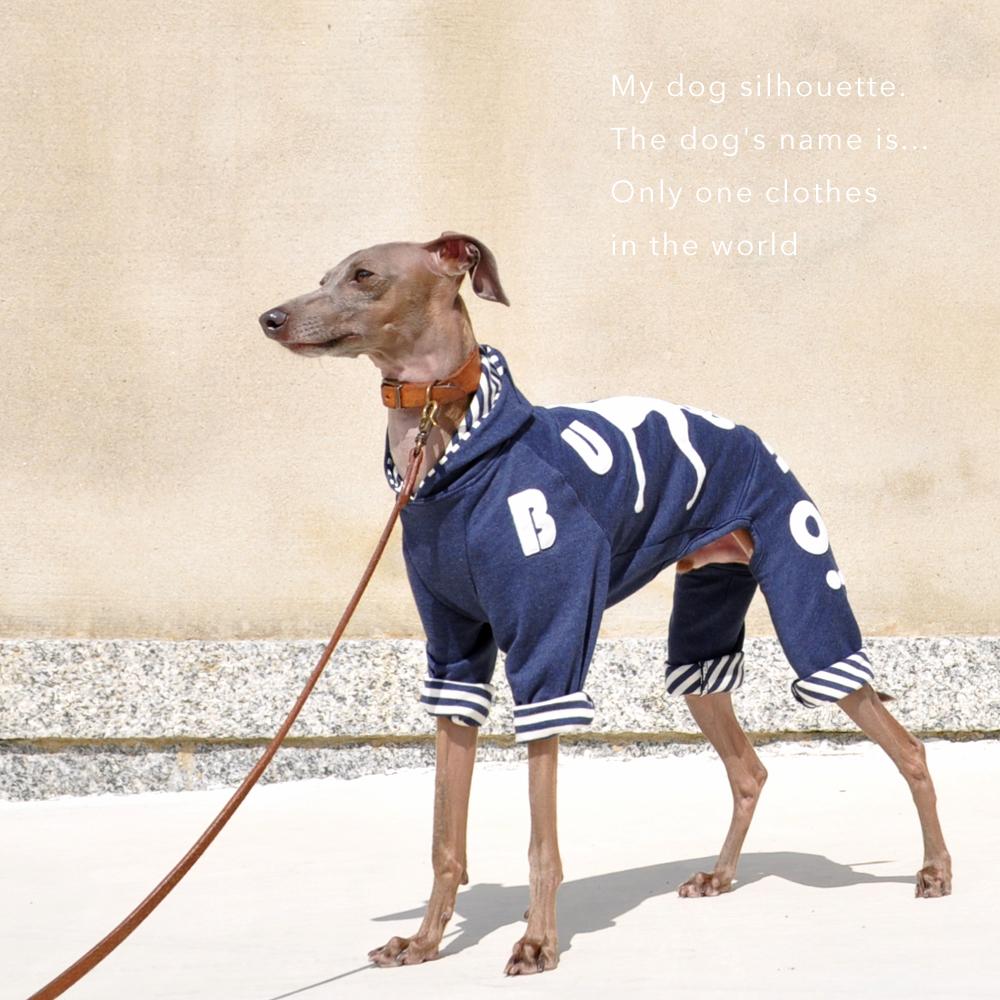 「犬服在庫追加」冬→春のおしゃれを楽しもう♪ボーダー、花柄・・・