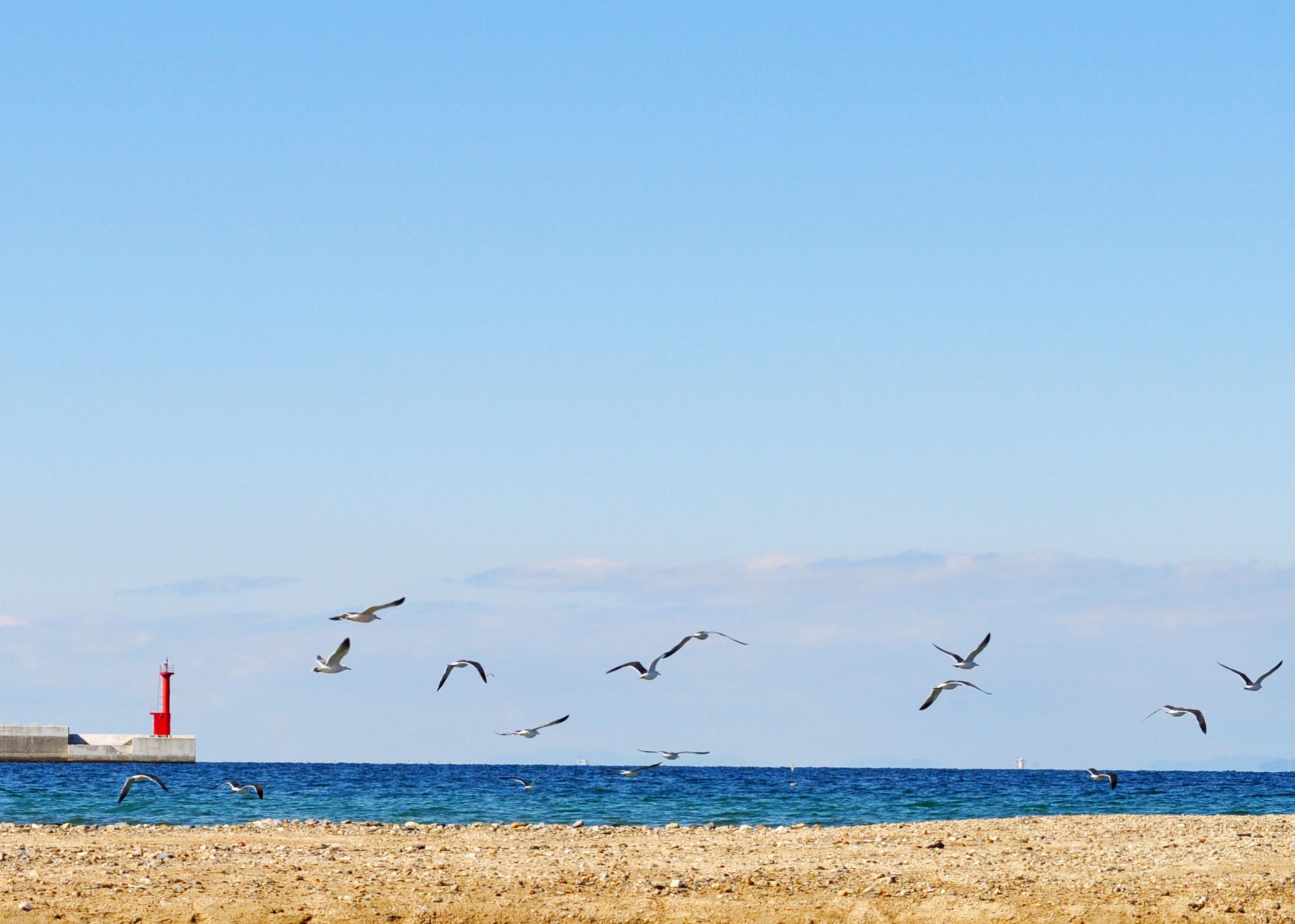 「淡路島の景色」春が近づいてる予感。