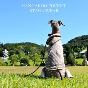 「犬服新色登場」一番シンプルな配色と、個性的な配色|カンガルーポケットのスター☆ウエア