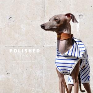 綺麗な発色と、絹のような光沢が特徴の上質なイタリア製生地を使用した「洗練されたイタリア製舶来ボーダーニット」