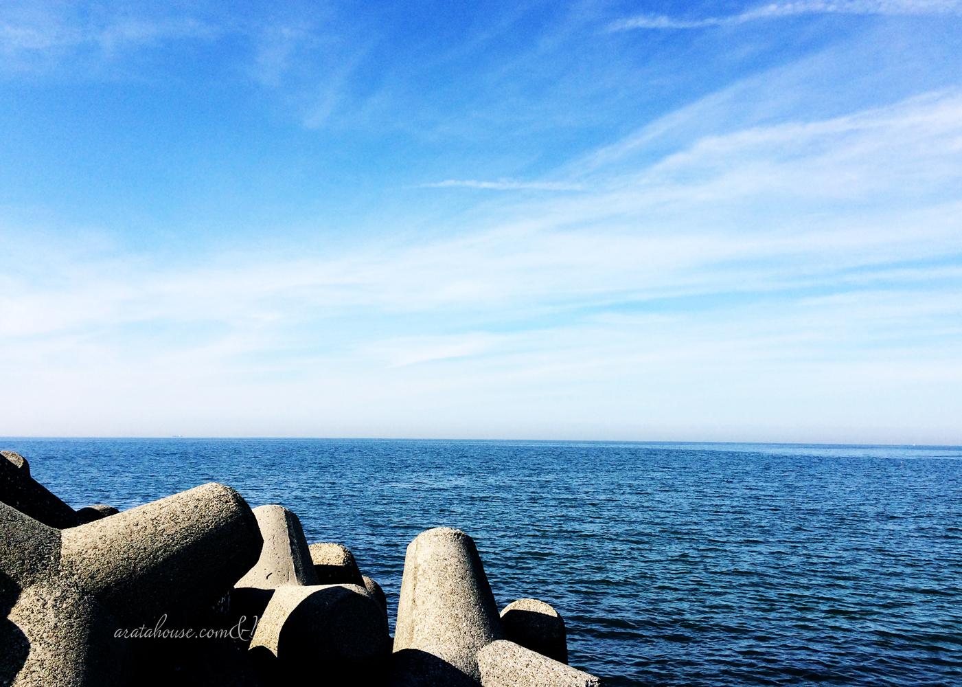 「イタグレBuono!の日常」海見て、防波堤でカイカイして、ブラッシングでほっこり。