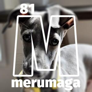 【ARATA HOUSEメルマガ Vol.81】「ドライフードの選び方」イタグレBuono!のごはん事情|2016/3/28発行