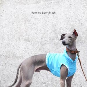 犬服|Running Sport Mesh|選べる3タイプ×3カラー(パステルブルー/パステルイエロー/パステルピンク)