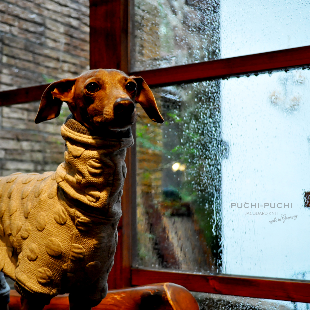 犬服|PUCHI-PUCHI|ドイツ製ジャガードニット|選べる3タイプ