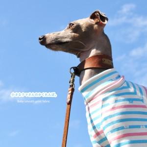 犬服|小さなクマさんのかくれんぼ。|選べる4タイプ×3カラー(そら/もも/しば)
