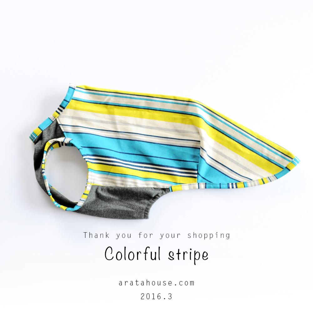 製作した犬服のご紹介 FASHION SHOW 001 「カラフル」「シンプルボーダー」「RELAX」