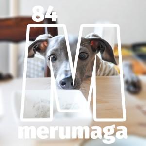 【ARATA HOUSEメルマガ Vol.84】「食事量と食事回数」イタグレBuono!のごはん事情|2016/4/25発行