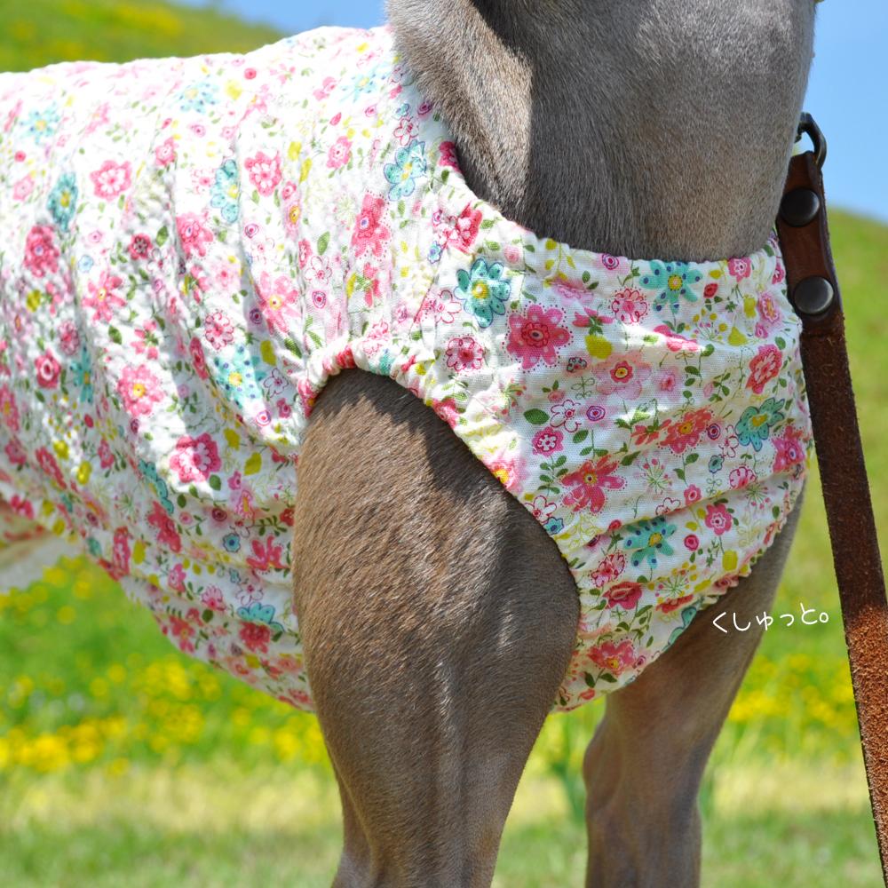 犬服 くしゅっと。かわいいお花 リップルプリント 選べる3タイプ