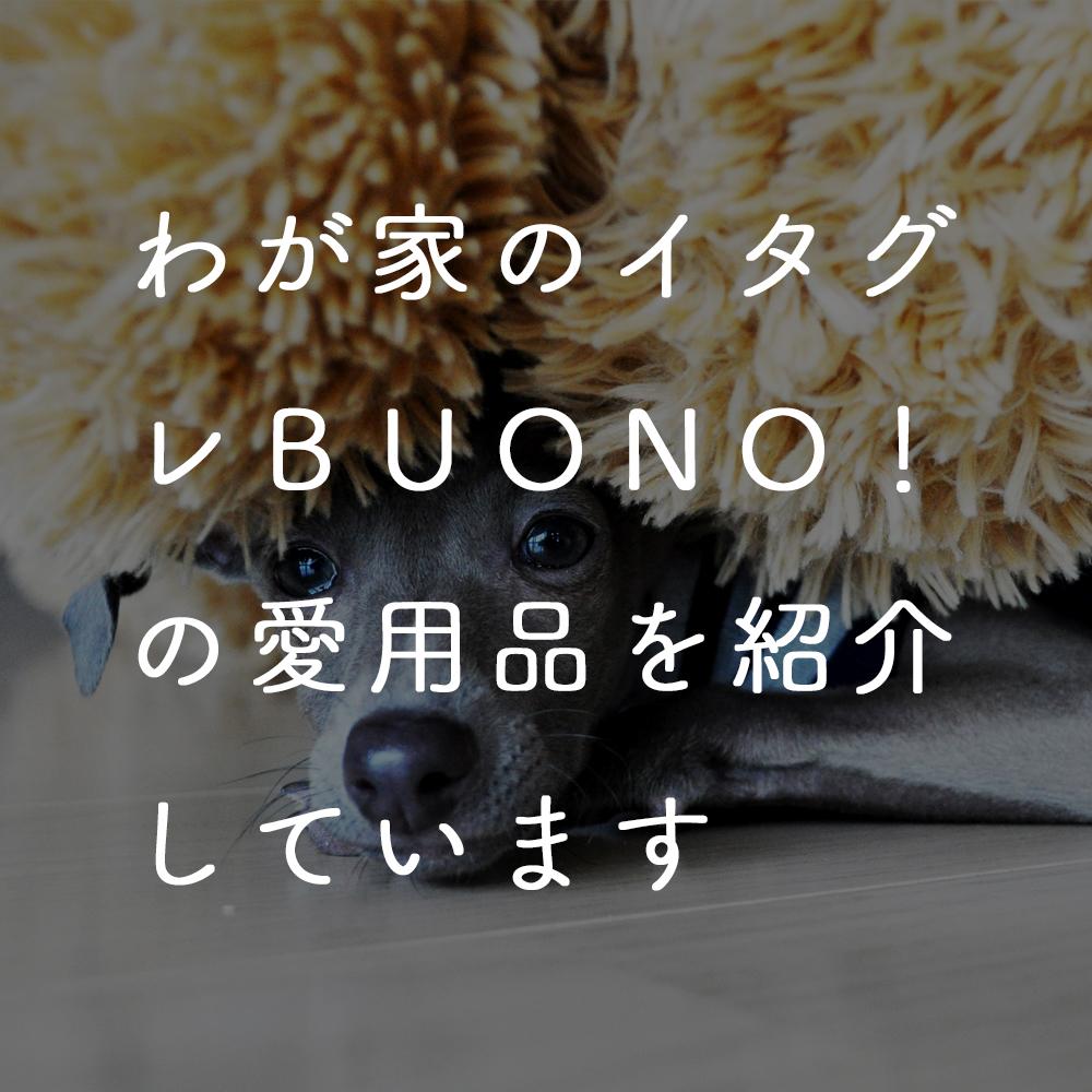 愛犬イタグレBuono!の愛用品や、使ってみて良かったオススメのアイテムを紹介しています。 Buono!のごはん、トイレアイテム、シャンプーに、散歩アイテム、おもちゃ、首輪やリードなど