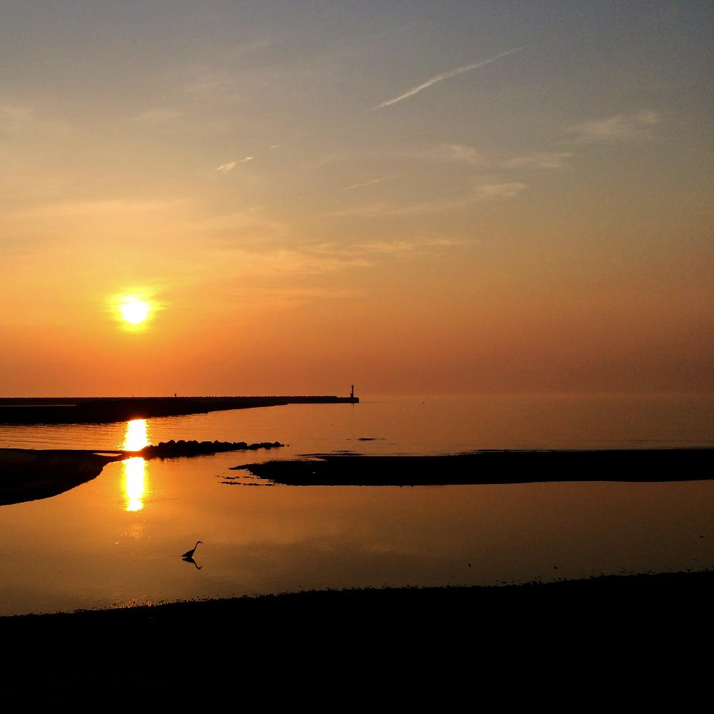 「淡路島の漁港」夕暮れのひととき、釣竿片手に愛犬と散歩に行く。